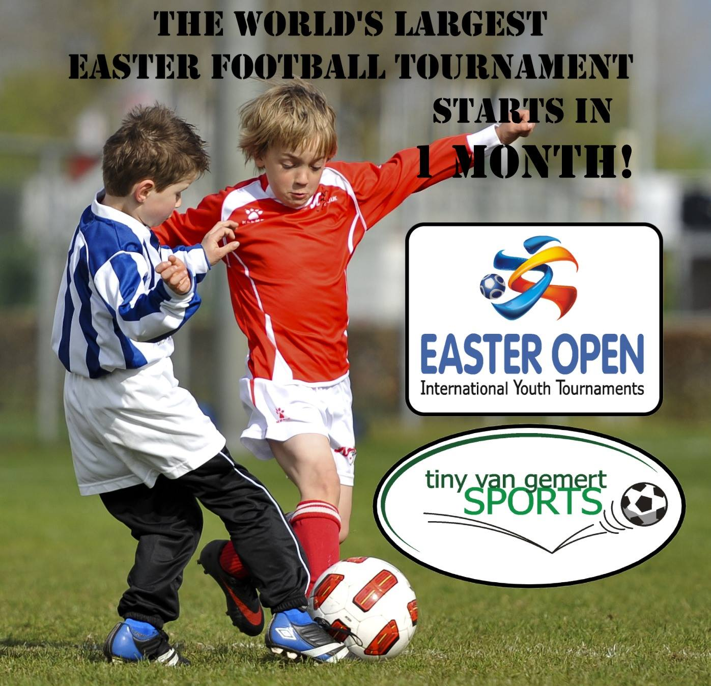 The Easter Open  …